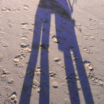 Cronulla Beach: Long Shadow