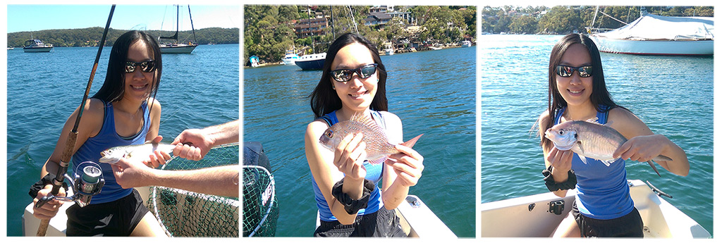 Fish I Caught: Tailor, Baby Snapper, Trevally