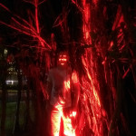 Cairns, June 2015: Demonic Richard